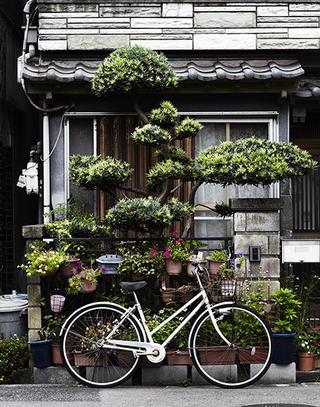 CNT-Osaka Ikuno Hondori Shotengai 1003